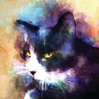 03_J_Crosby_Watercolor_Cat_CMYK